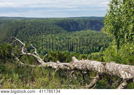 Green Valley Rural Countryside Panoramic Landscape With Forest Trees Expanse And Mountain Hills. Nat