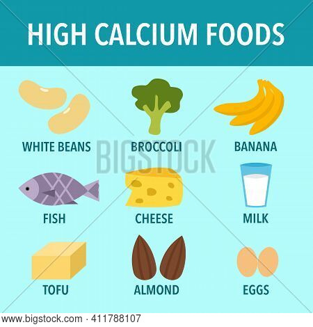 High Calcium Foods Infographic Vector Illustration. Healthy Food.