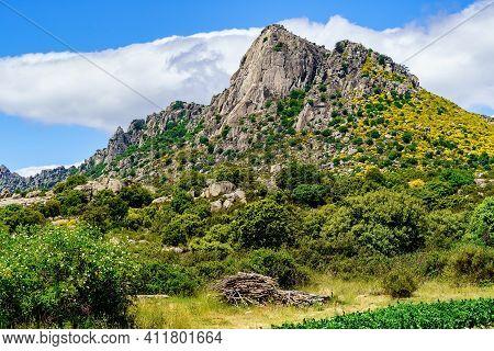 Vertical Wall Rocky Mountain With Green Plants And Yellow Flowers. Pico De La Miel In La Cabrera Mad
