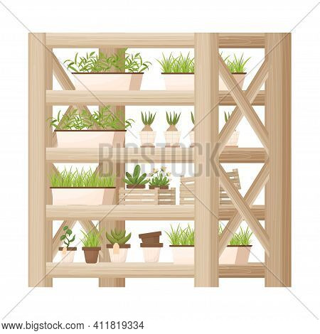 Wooden Shelving, Showcase With Plants, Flowerpots In Cartoon Style, Textured And Detailed Isolated O