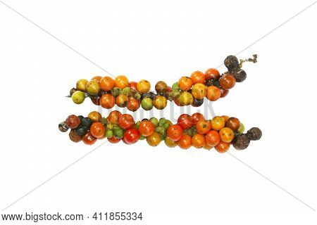 Raw Fresh And Dry Of Pepper Colorful And Multicolor Isolated