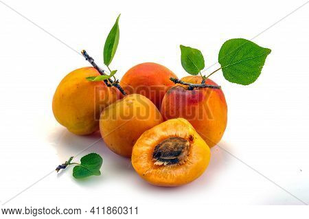 Isolated Apricot. Fresh Cut Apricot Fruits Isolated On White Background