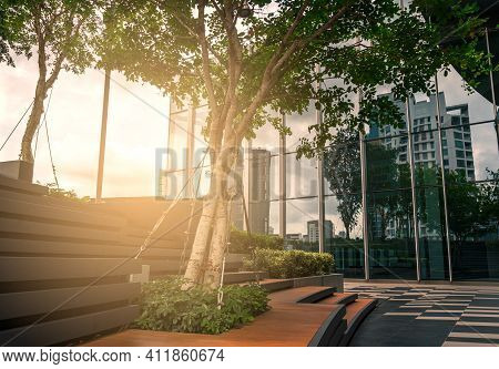 Nature Of Business Building, Big Tree In The Outdoor Garden On The Rooftop Of Business Building, Rel