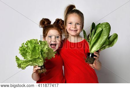 Cheerful Smiling Girls Hold Out Two Different Kinds Of Fresh Lettuce Leaves To The Camera. Girl Posi