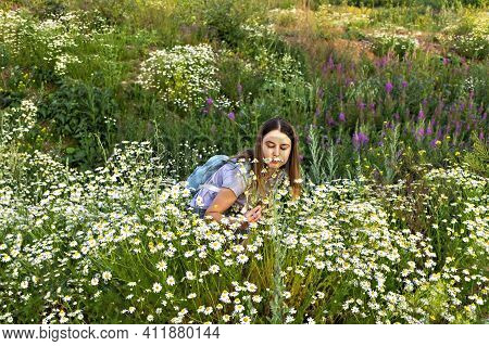 Young Pretty Caucasian Woman Walking In Meadow Among Flowers And Sniffing Chamomile Flower In Summer