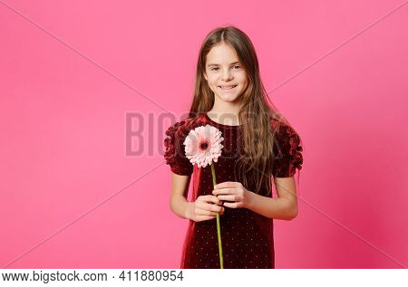 1 Girl In A Red Dress With A Gerbera Flower On A Pink Background