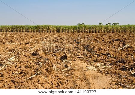 Ploughed Agricultural Land and blue sky
