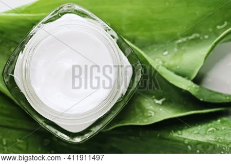 Natural Moisturising Cream Jar On Green Leaves As Beauty Flatlay, Spa Cosmetics And Skincare Closeup