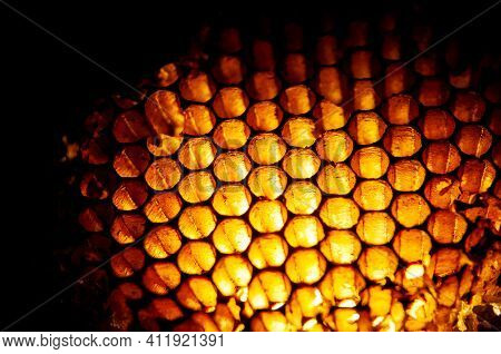 Hexagonal Shaped Honey Combs In Golden Colors, Macrophotography With Backlight