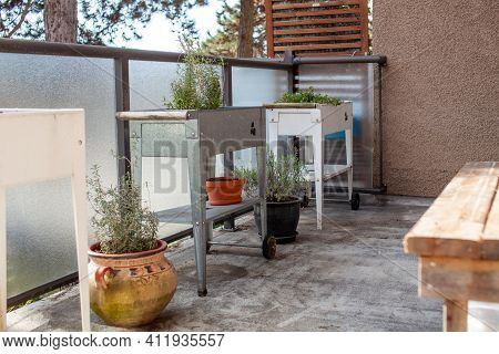 A White And Silver (galvanized) Elevated Garden Planter Sits On An Apartment Patio In The Spring. St