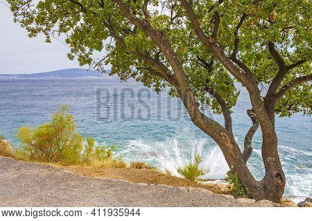 Beautiful Mediterranean Landscape In Novi Vinodolski Croatia Behind A Tree.