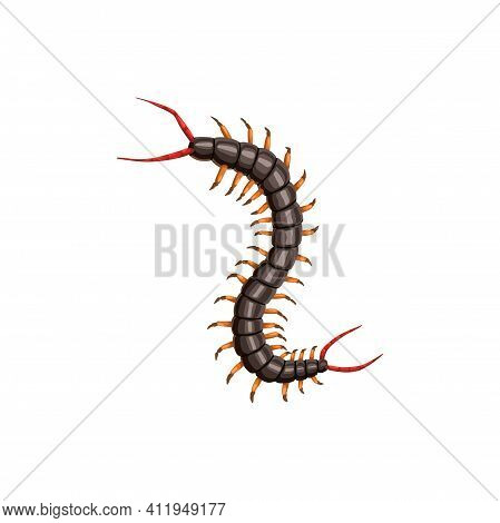 Centipede Icon, Pest Control Insects Disinsection And Extermination, Vector. Centipede Insect, Agric