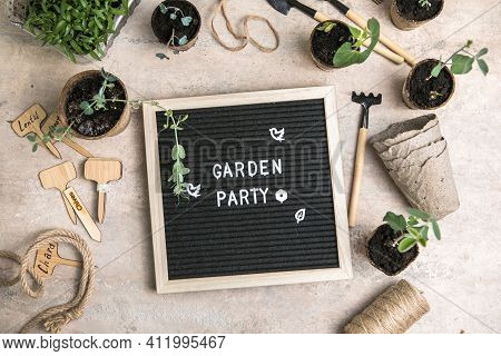 Letter Board With Text Garden Party. Planting Seeds In Biodegradable Paper Eco-friendly Seed Pots. G