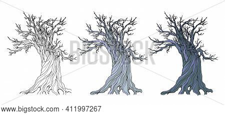 Set Illustration With An Old Rotten Mystical Dead Oak Tree On A Dark White Background. Vector Illust