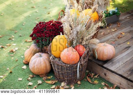 Decorated Entrance To House With Pumpkins In Basket And Chrysanthemum. Front Porch Decorated For Hal