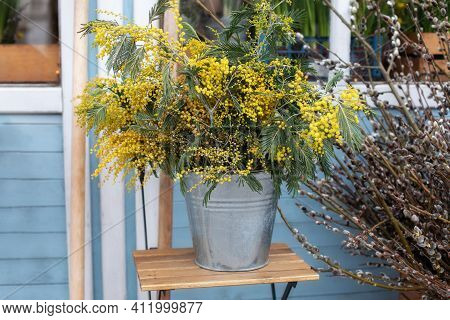 Bouquet Of Yellow Wildflowers In Bucket On Veranda Home. Easter Decor Spring Terrace. Bunch Mimosa F