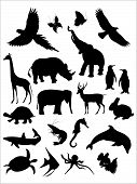 Collection of animal silhouette on white isolated vector illustration. poster