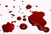 Blood stains on a white background . poster