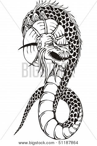 Oriental Dragon Worm