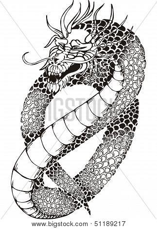Chinese Legless Dragon