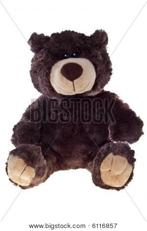 Teddy bear, isolated on white