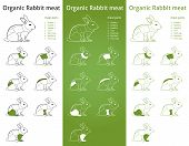 Organic RABBIT meat parts icon for packaging and info-graphic poster