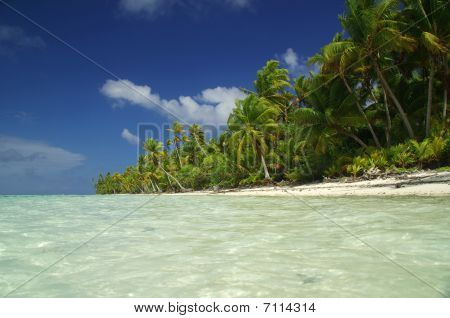 Paradise beach with white sand and palm trees in French Polynesia