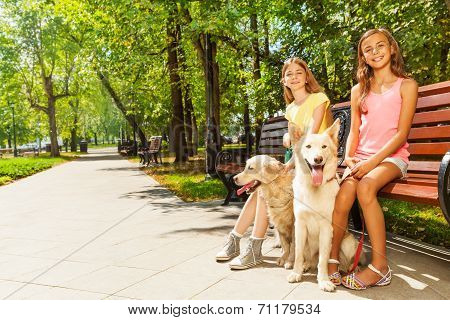 Two nice teenage girls with retriever dogs sitting on the bench in the park on sunny summer day poster