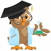 Owl teacher in a blue robe holding a flask. Vector cartoon illustration poster
