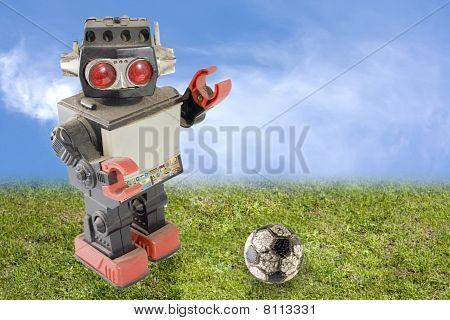 Robot Soccer Player