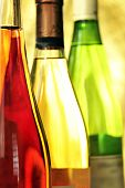 Still-life with wine bottles with natural light poster