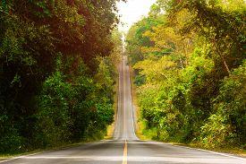 Asphalt Road Rising To The Sky Through Tropical Rain Forest