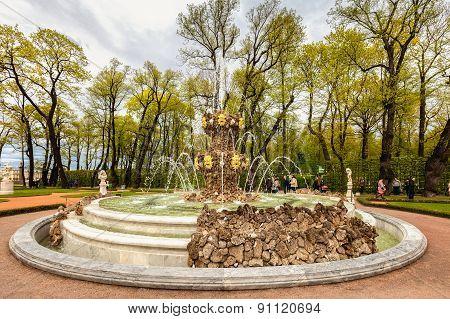 Fountain In The Summer Garden In St. Petersburg