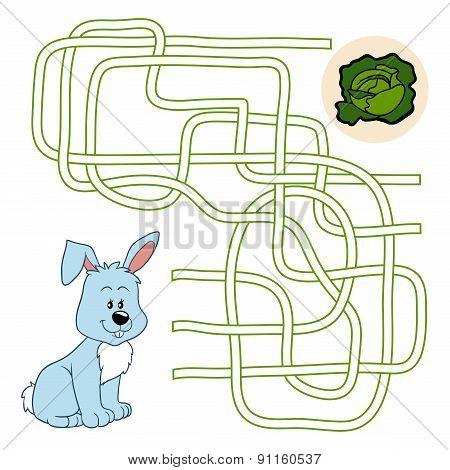 Maze Game (rabbit)
