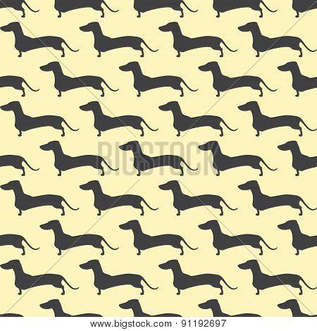 Dachshund Pattern