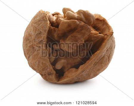 Half-cracked Walnut