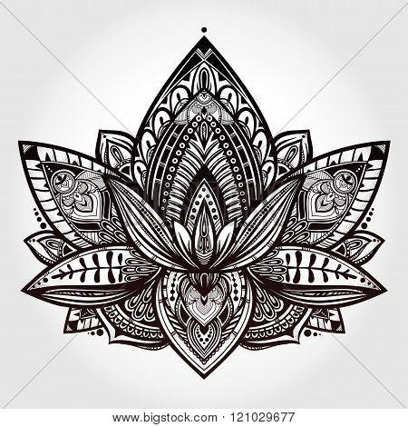 Vector ornamental Lotus flower .