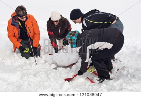 WERTACHER HOERNLE, WERTACH, GERMANY - FEBUARY 28 2016: Team of mountain rescuers searching for a victim buried in deep fresh winter snow digging with small spades and trowels after locating a signal