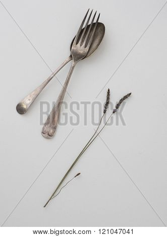 Cut-out Of Old Spoon And Stalk Of Grass