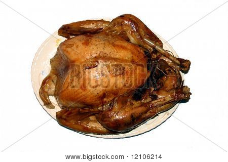 holiday roasted turkey on platter (isolated)