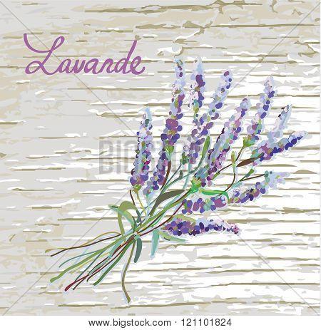 Lavander Rustic Background With Nice Design -  Illustration
