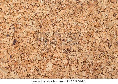 texture of cork