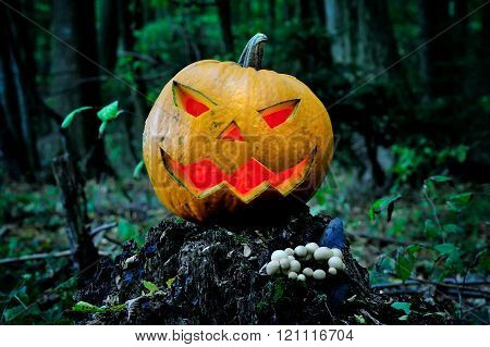 Halloween Scary Pumpkin With A Smile In Forest