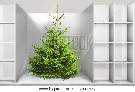 Christmas tree on the shelf in a department store