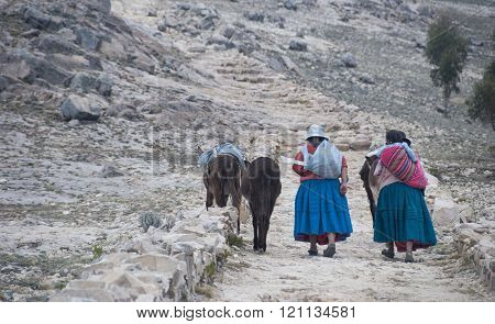 ISLA DEL SOL, BOLIVIA - NOVEMBER 2008 : A family walks home after a hard day's work . November 2008 in Isla del Sol, Bolivia .