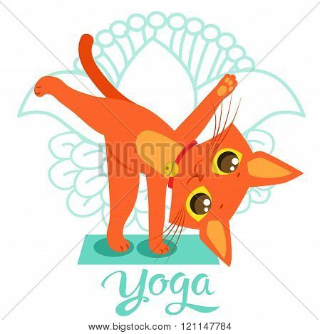 Cartoon Funny Cat Icons Doing Yoga Position. Yoga Cat Pose. Yoga Cat Vector. Yoga Cat Meme. Yoga Cat Images. Yoga Cat Figurine. Cat As Toy. Yoga Cat Statue. Yoga Cat Balance. Meditation.