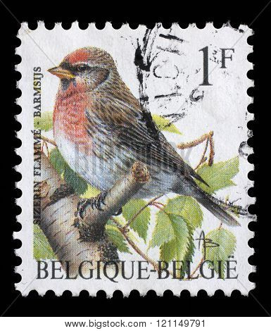 ZAGREB, CROATIA - SEPTEMBER 03: A stamp printed by Belgium shows Redpoll(Carduelis flammea), group of small passerine birds in the finch family, circa 1992., Zagreb, Croatia on September 03, 2014.