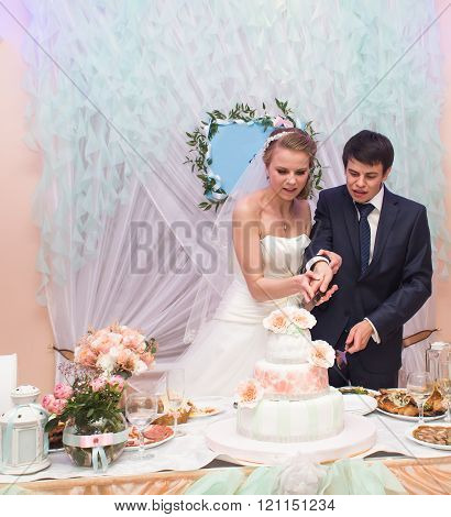 Happy bride and  groom is cutting their wedding cake