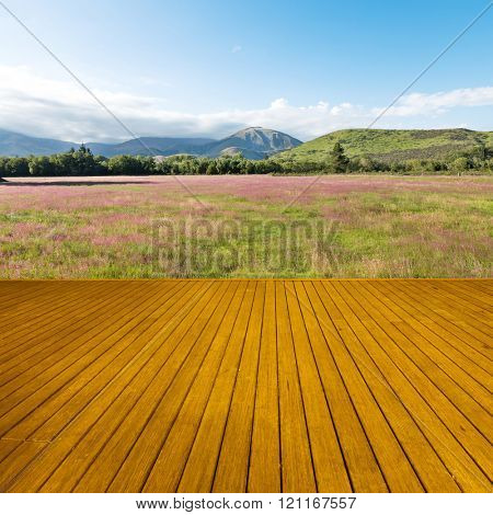 wood floor with pasture in summer sunny day in New Zealand