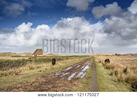Traditional Sheep Barn In A Nature Reserve At Cloudy Day